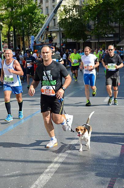 ATHENS 2015 Half Marathon Running Event stock photo