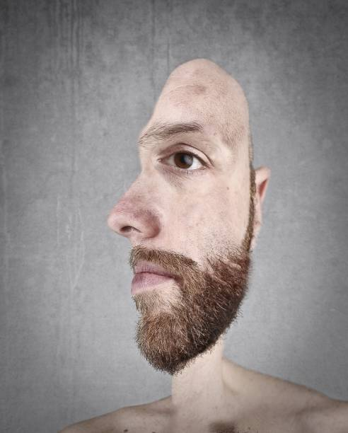 half me - illusion stock photos and pictures