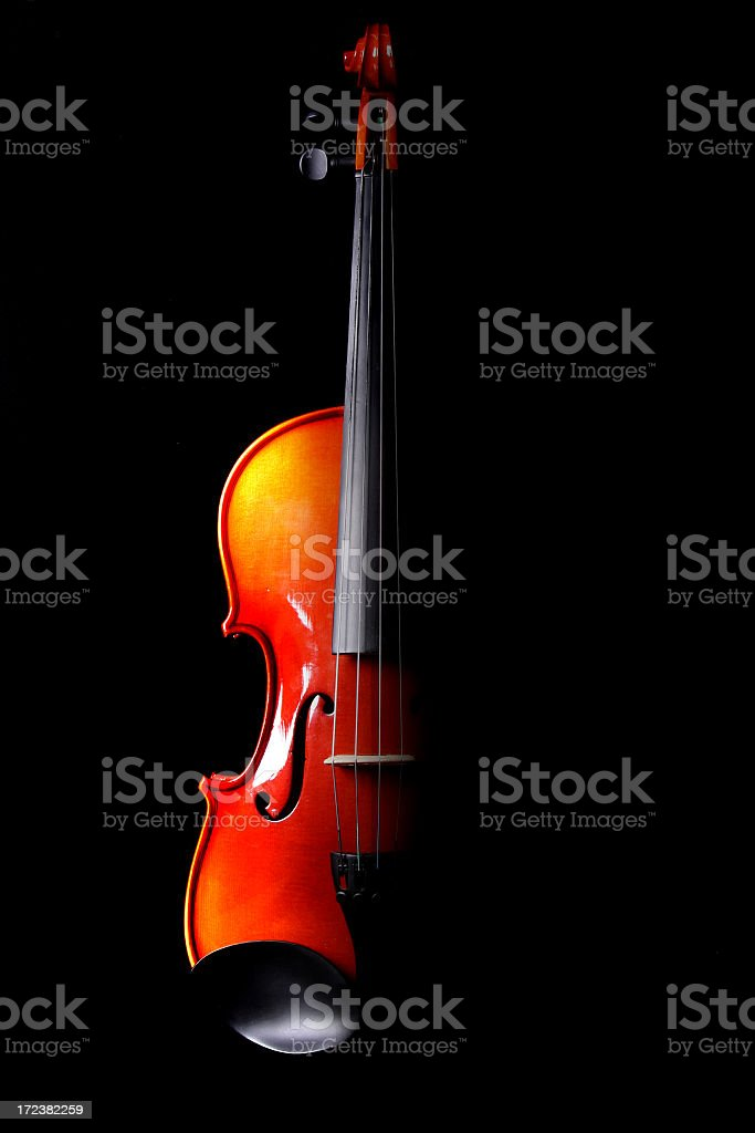 Half of a violin in black background royalty-free stock photo