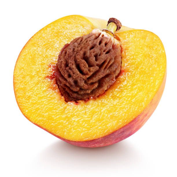 half of peach fruit with nut isolated on white Ripe half peach fruit with nut isolated on white background with clipping path. Full depth of field. halved stock pictures, royalty-free photos & images