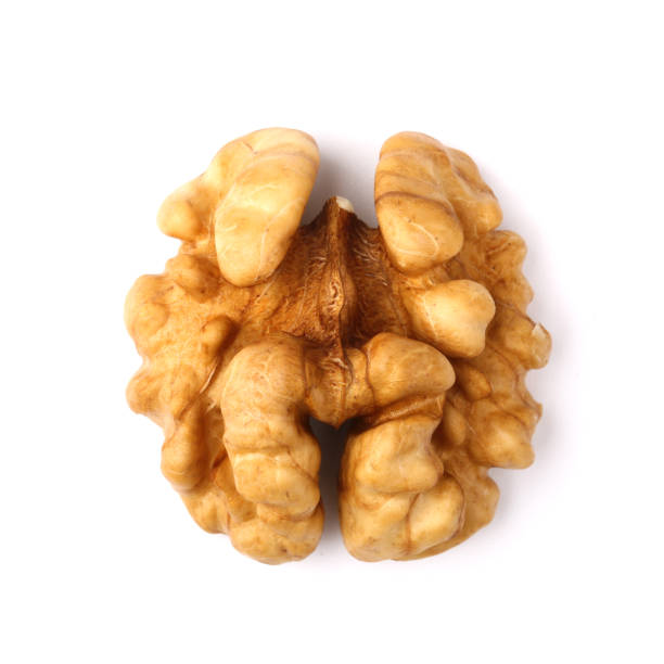Half Of Walnut stock photo