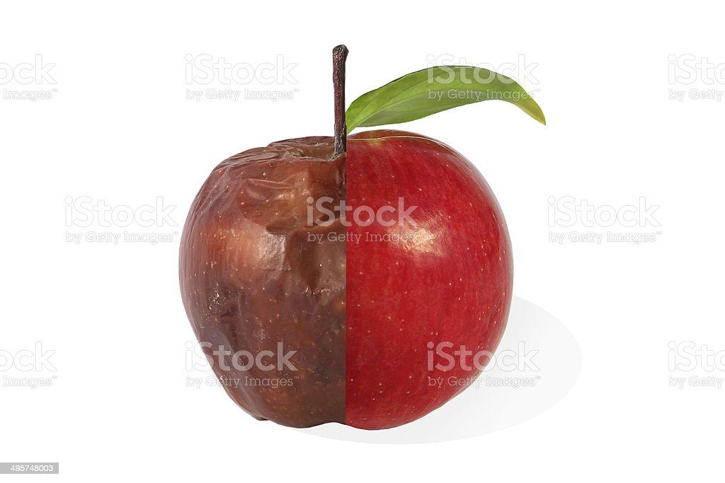 Half rotten and  fresh apple stock photo