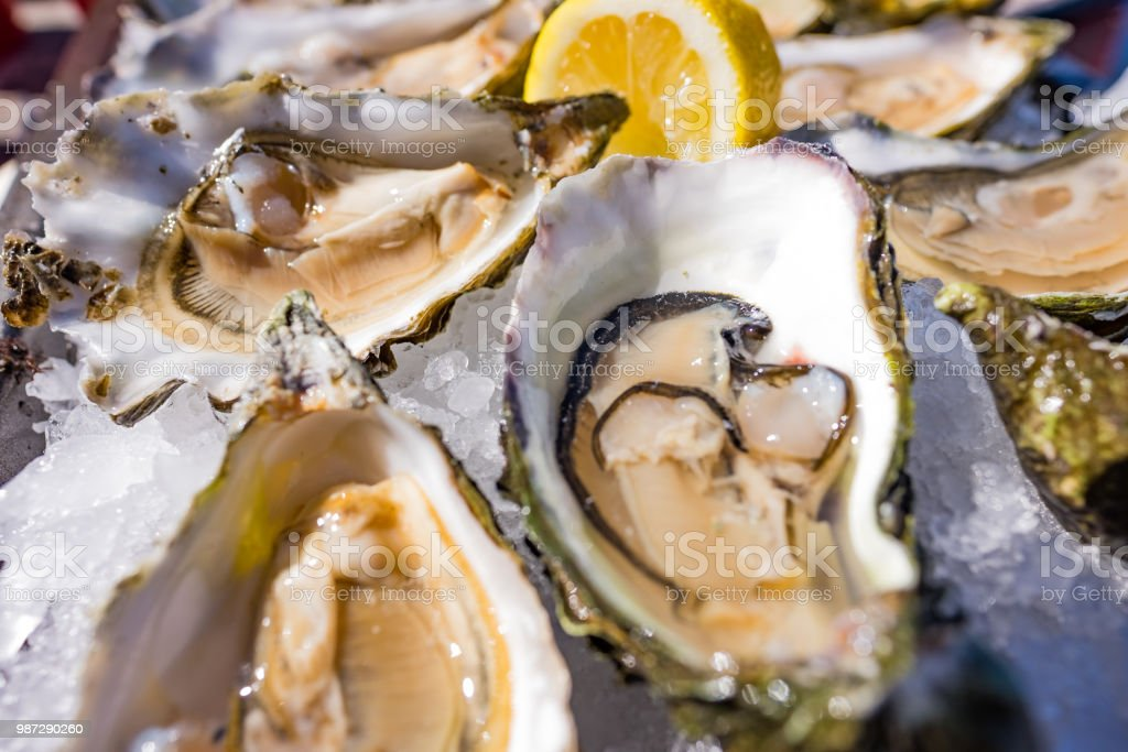Half shell shucked oysters on a bed of ice - borderless stock photo