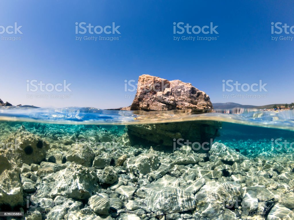 Half underwater in the sea. stock photo
