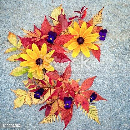 istock half wreath made of rudbeckia and autumnal leaves 612225290