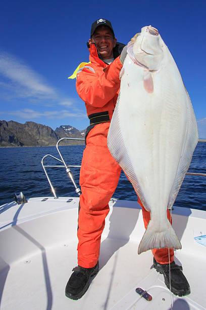 heilbutt-fischen - heilbutt stock-fotos und bilder