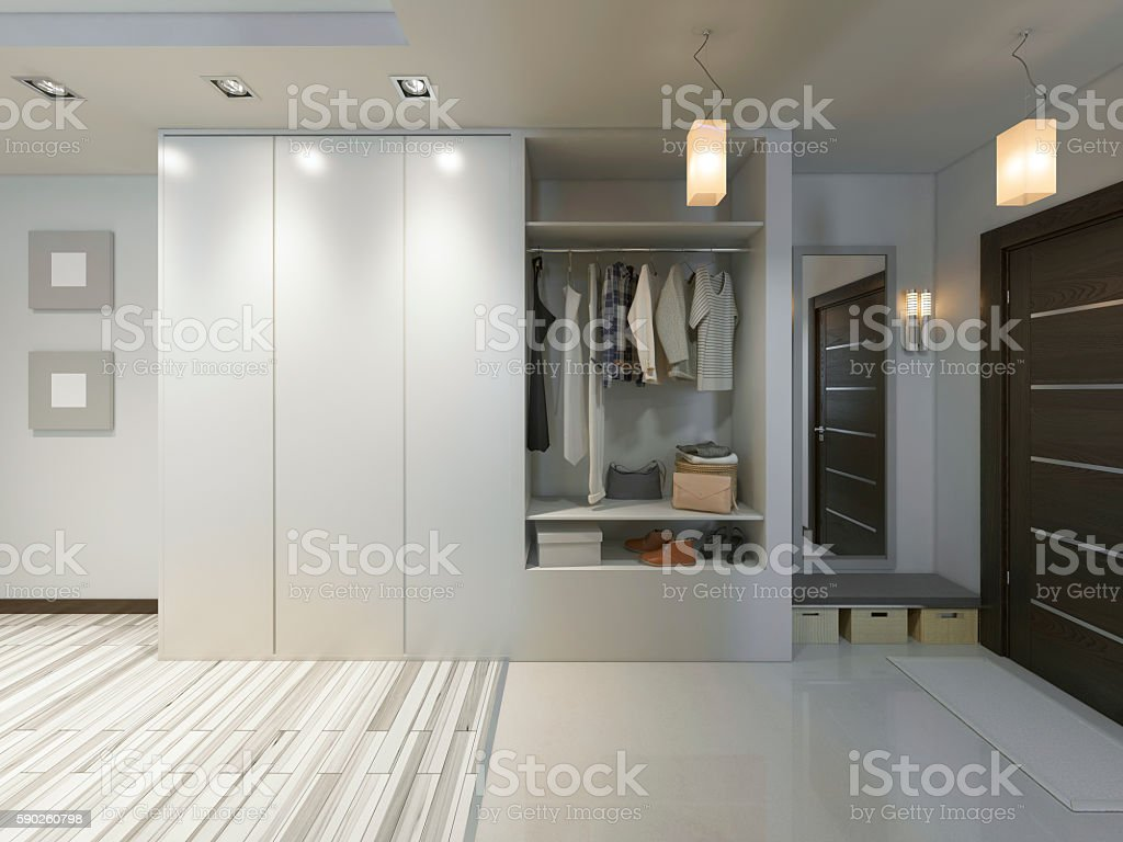 Hall With A Corridor In Contemporary Style With A Wardrobe