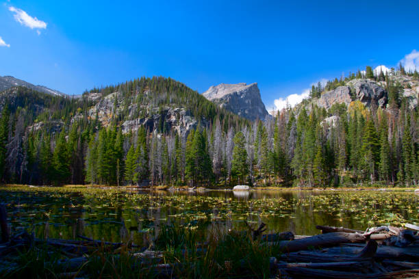 Hallett Peak seen from Nymph Lake at Rocky Mountain National Park stock photo