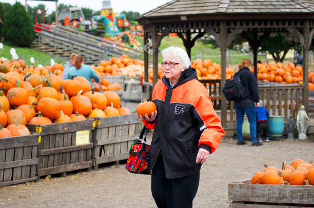 Halloween at the Farm stock photo
