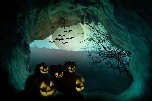 halloween-hintergrund. gruselige kürbis mit mond und abgestorbene bäume auf dunklen wald. halloween-design-konzept mit textfreiraum. - plants of zombies stock-fotos und bilder
