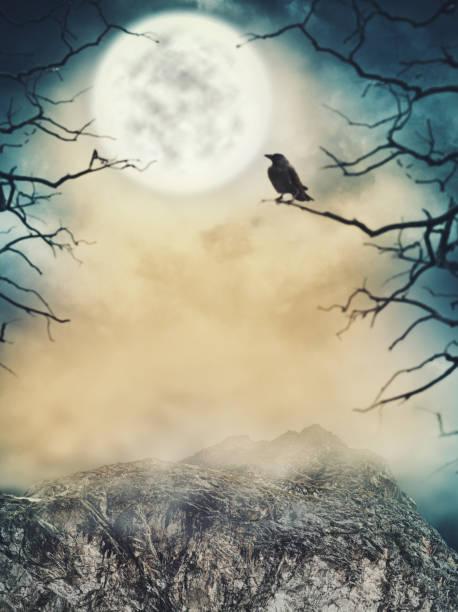 halloween-hintergrund. spooky himmel mit mond und tote bäume - halloween party einladungen stock-fotos und bilder