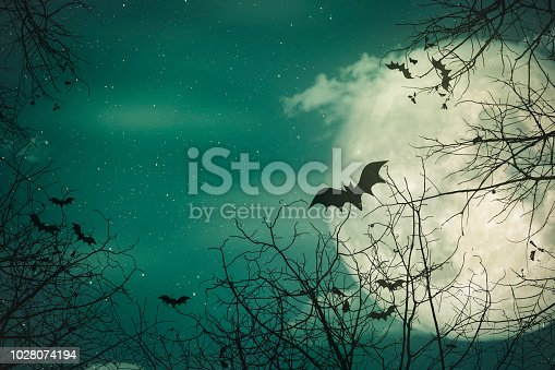 Halloween background. The spooky forest with full moon background