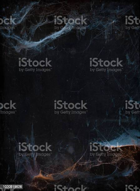 Halloween background with cobweb picture id1020519526?b=1&k=6&m=1020519526&s=612x612&h=omafc2wuuqnf zcrines olytsy5zqtw6t45um6biz8=