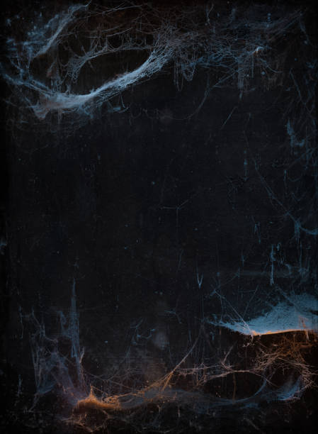 Halloween background with cobweb picture id1020519526?b=1&k=6&m=1020519526&s=612x612&w=0&h=487jq9 jdcg1jpl amyc6f9uza5uth0tuj90hygix7y=