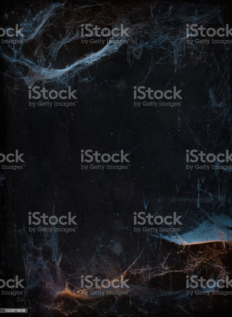 Halloween background with cobweb stock photo
