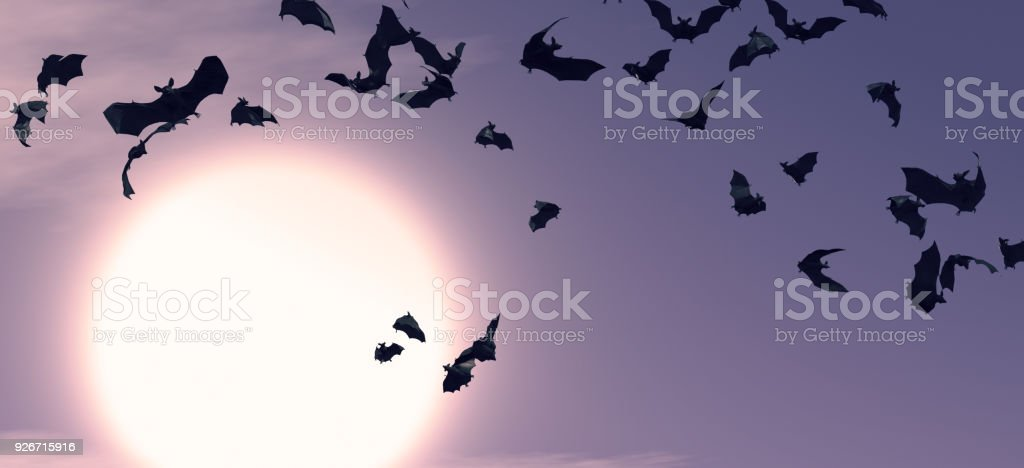 Halloween Backgrounds with Bats stock photo