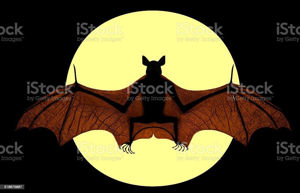 Halloween bat stock photo