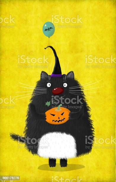 Halloween cat in witch hat with pumpkin and balloon picture id866178276?b=1&k=6&m=866178276&s=612x612&h=pvagfghzbd8twmbkvkjr3l kjjawd6d5a3vijrqsxaa=
