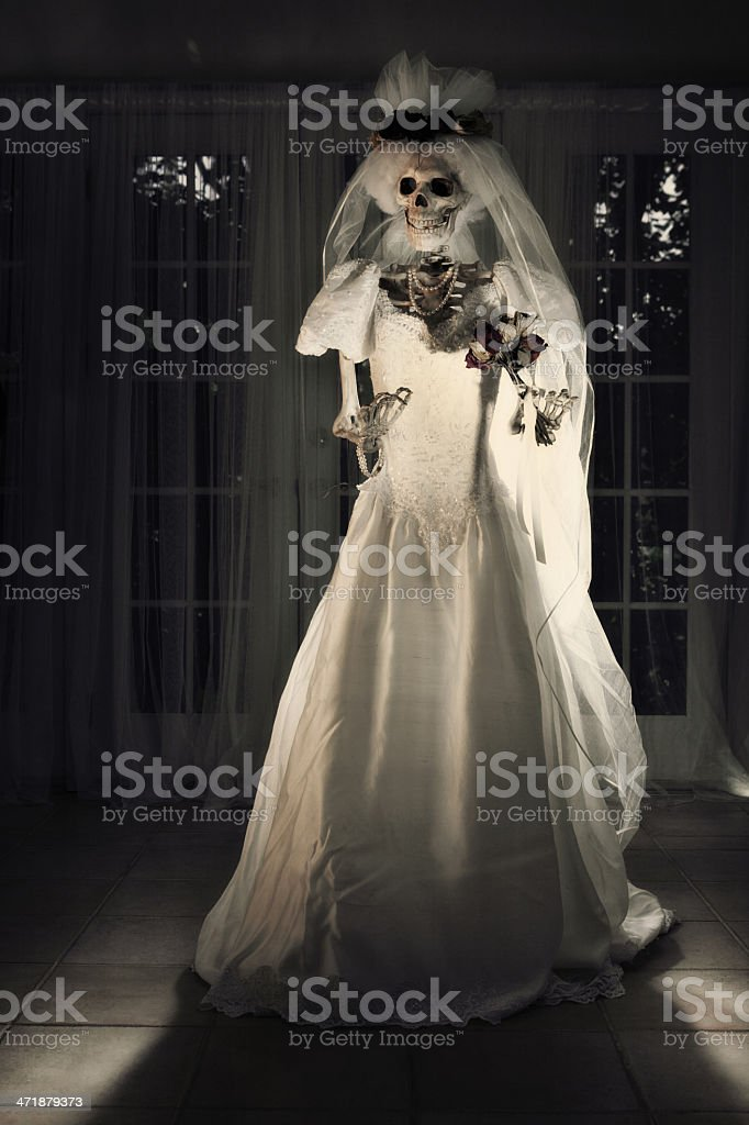 Halloween Day of the Dead Wedding Skeleton Bride Portrait royalty-free stock photo