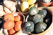 mix pumpkins and buttercup at outdoor market place