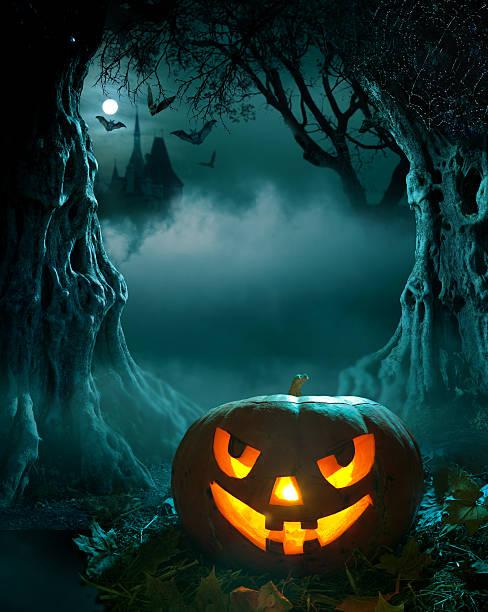 halloween design - waldfriedhof stock-fotos und bilder