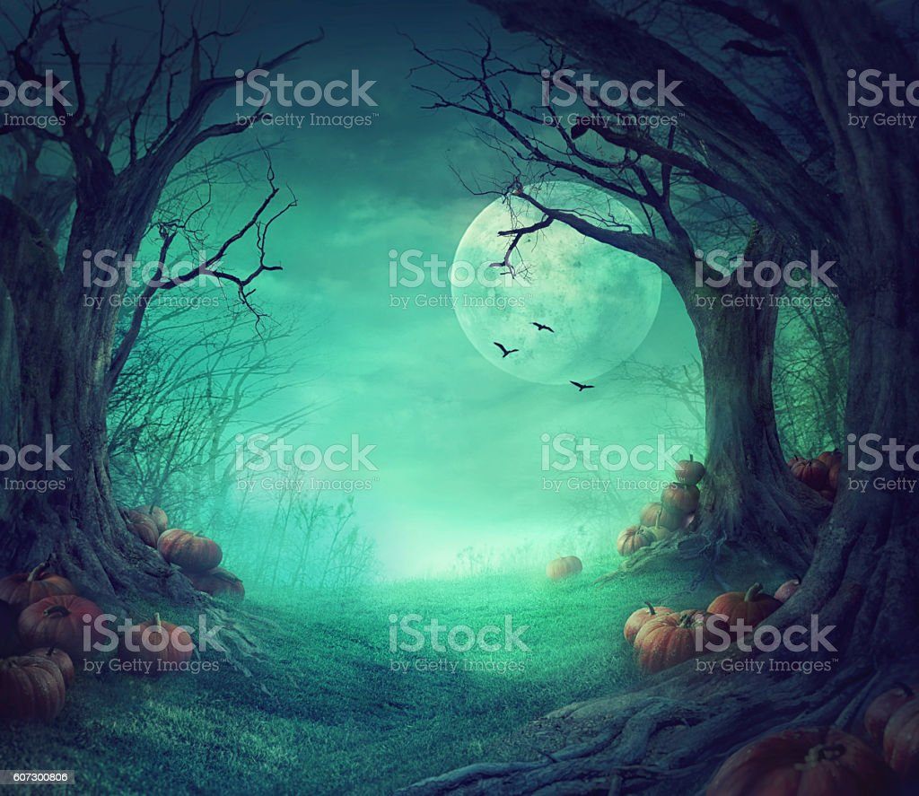 Halloween design stock photo