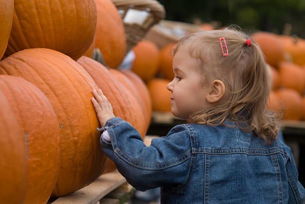 halloween-bauernmarkt - kürbis kaufen stock-fotos und bilder