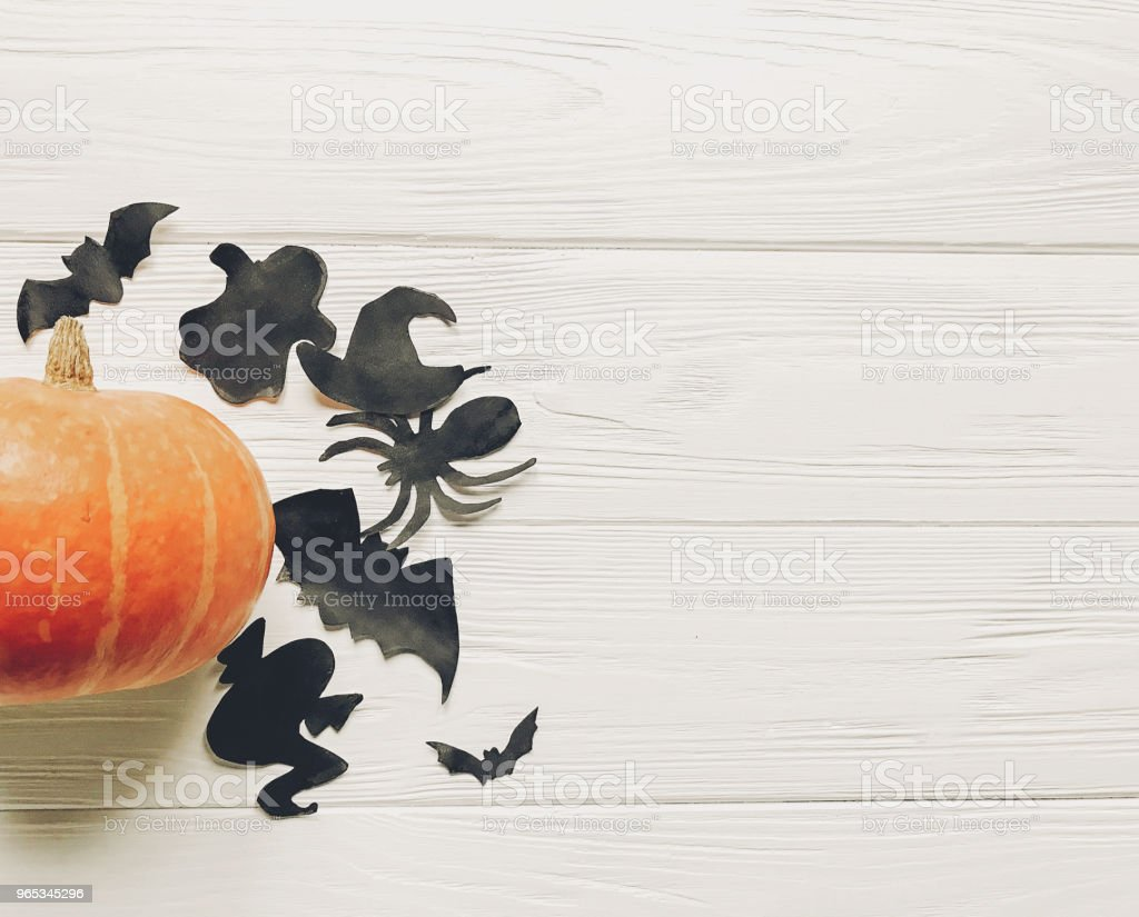 halloween flat lay. happy halloween concept. pumpkin with witch ghost bats and spider black decorations on white wooden background top view with space for text. seasonal greetings royalty-free stock photo