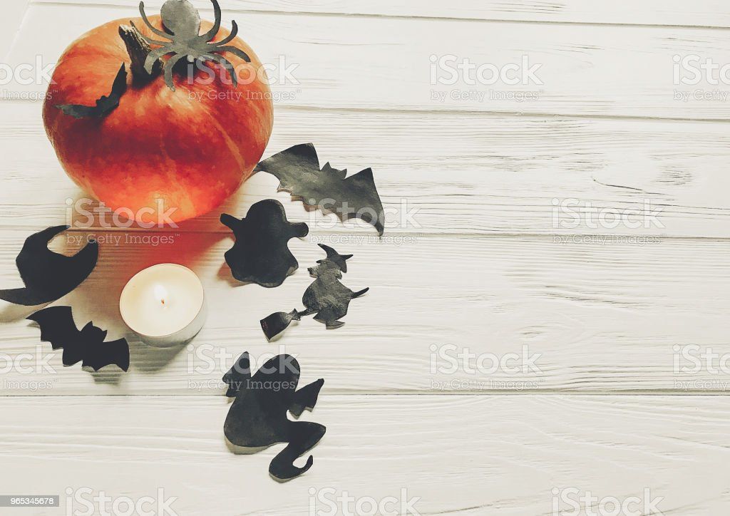 halloween flat lay. happy halloween concept. pumpkin with witch ghost bats and spider black decorations on white wooden background top view with space for text. seasonal greetings zbiór zdjęć royalty-free
