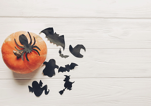 Halloween Flat Lay Happy Halloween Concept Pumpkin With Witch Ghost Bats And Spider Black Decorations On White Wooden Background Top View With Space For Text Cutouts For Autumn Holiday Stock Photo & More Pictures of Autumn