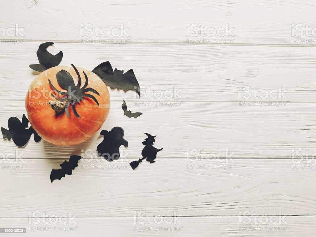 halloween flat lay. happy halloween concept. pumpkin with witch ghost bats and spider black decorations on white wooden background top view with space for text. cutouts for autumn holiday royalty-free stock photo