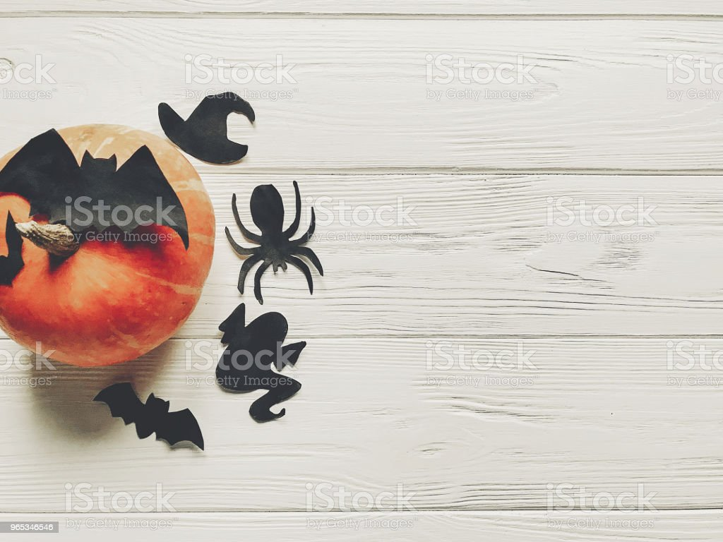 halloween flat lay. happy halloween concept. pumpkin with witch ghost bats and spider black decorations on white wooden background top view with space for text. cutouts for autumn holiday zbiór zdjęć royalty-free
