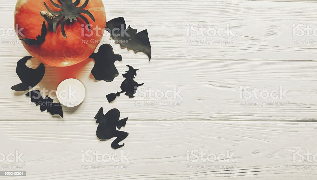 halloween. happy halloween concept. pumpkin with witch ghost bats and spider black decorations on white wooden background top view with space for text. seasonal greetings, holiday celebration zbiór zdjęć royalty-free
