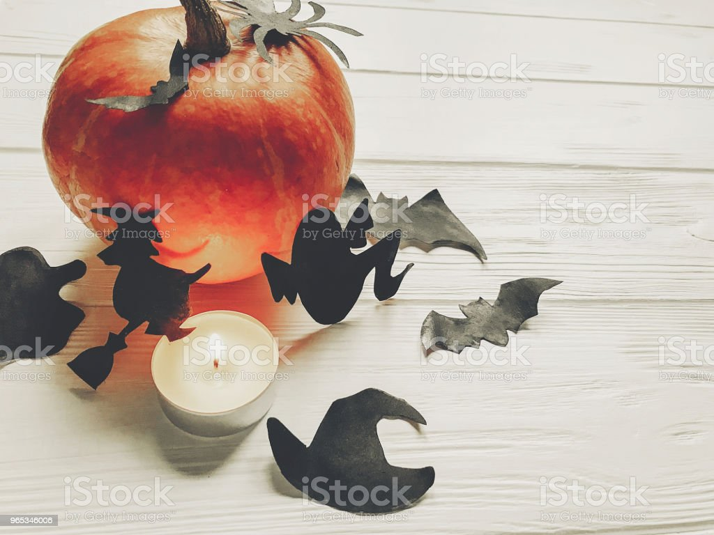 halloween. happy halloween concept. pumpkin with witch ghost bats and spider black decorations on white wooden background. cutouts for autumn holiday celebration. seasonal greetings royalty-free stock photo