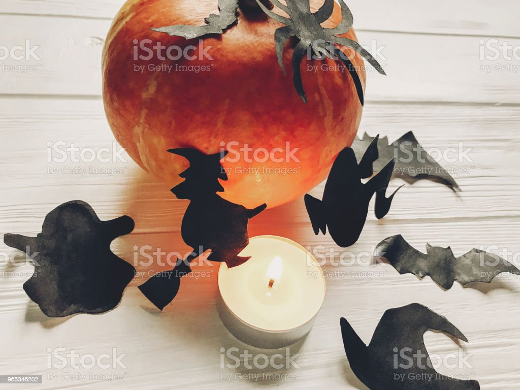 halloween. happy halloween concept. pumpkin with witch ghost bats and spider black decorations on white wooden background. cutouts in light, seasonal greetings, holiday celebration zbiór zdjęć royalty-free