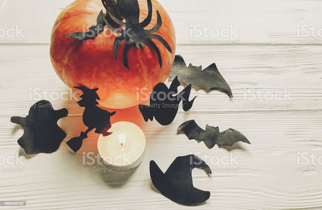 halloween. happy halloween concept. pumpkin with witch ghost bats and spider black decorations on white wooden background. cutouts for autumn holiday celebration. seasonal greetings zbiór zdjęć royalty-free