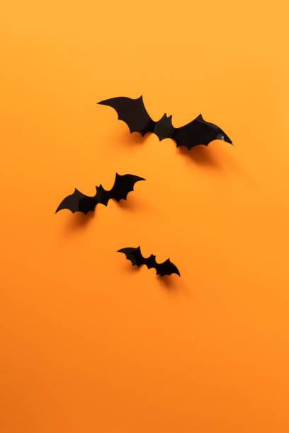 halloween-urlaubskonzept mit papierfledermäusen - halloween party einladungen stock-fotos und bilder