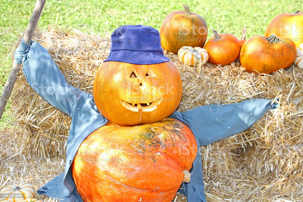Halloween Howdy stock photo