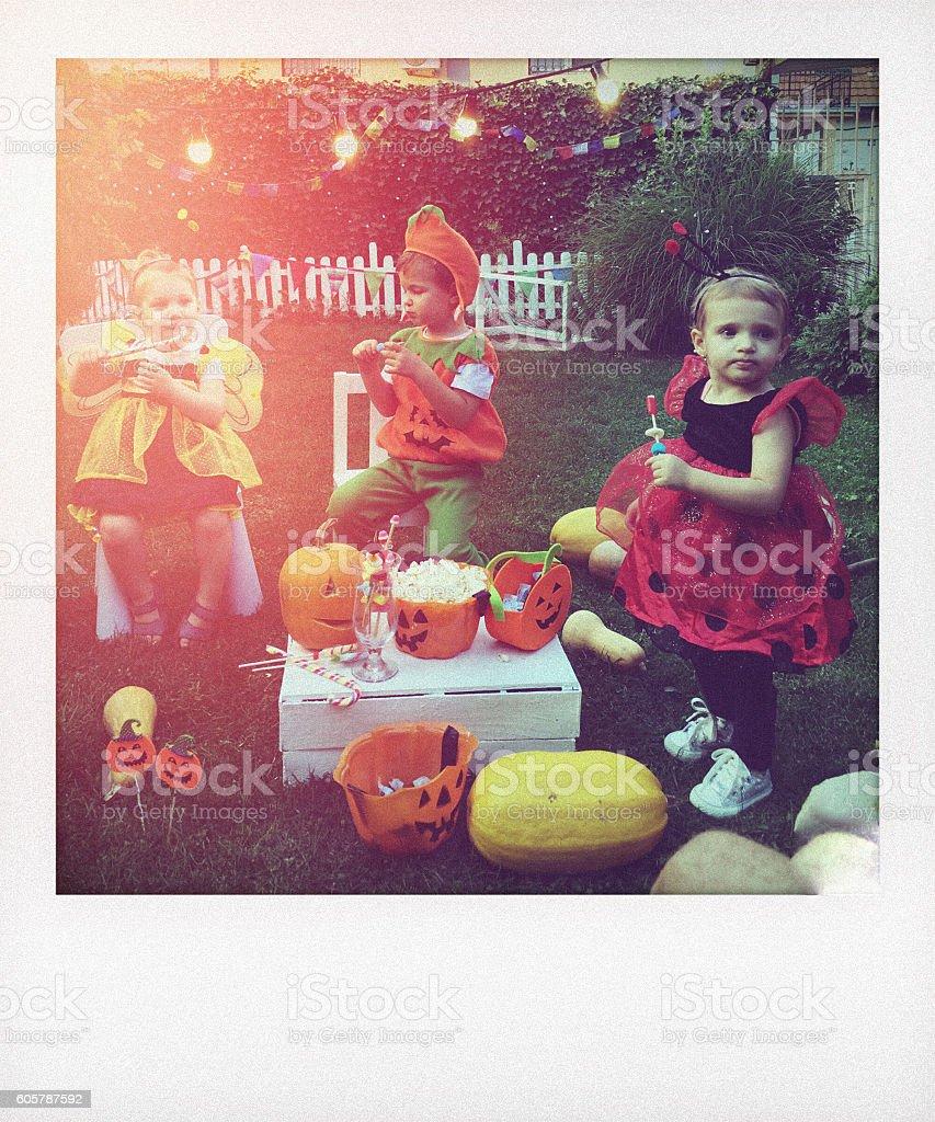 Halloween in our backyard stock photo
