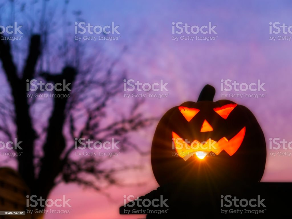 Halloween Jack O' lantern stock photo