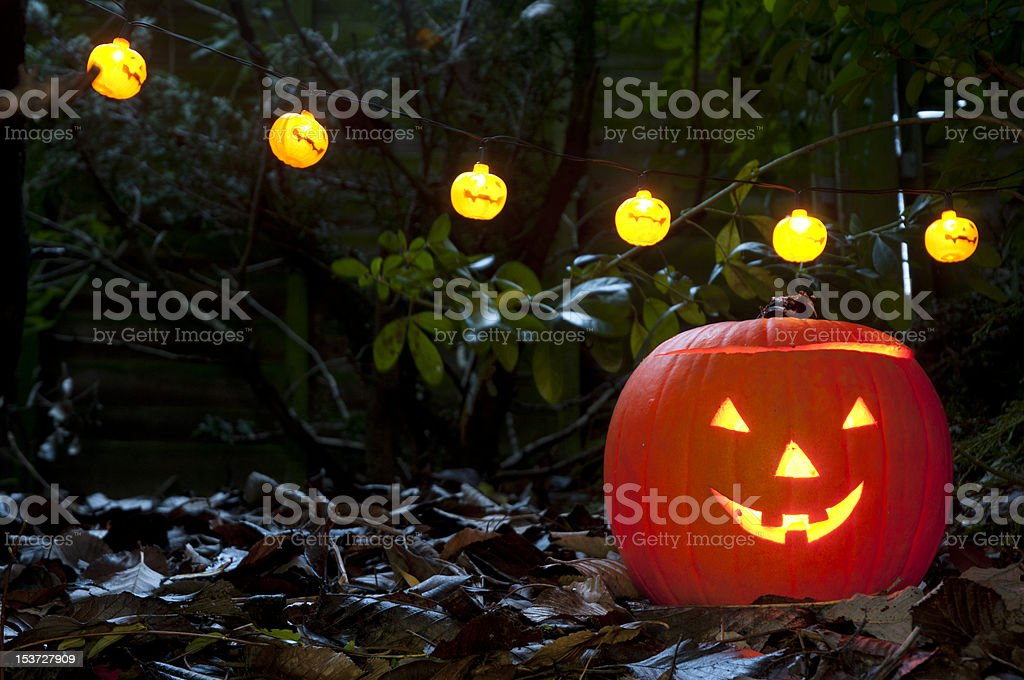 halloween lights and single pumpkin photographed in autumnwooded stock photo