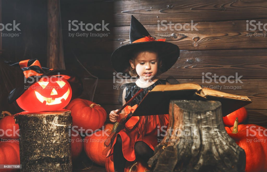 Halloween.  little witch   conjures with  book of spells,  magic wand and pumpkins stock photo