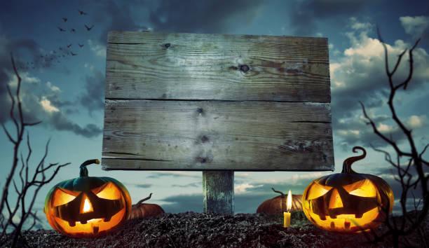 Halloween-Nacht-Konzept. Platz für Ihren Halloween-Urlaubstext. – Foto