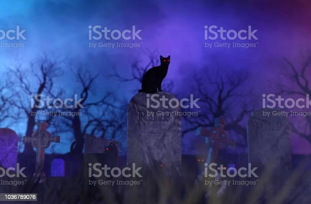 Halloween night picture id1036789076?b=1&k=6&m=1036789076&s=612x612&h=  tqwzsyocy8a0lqipuvyuspgtvekkohrgn9q6medea=