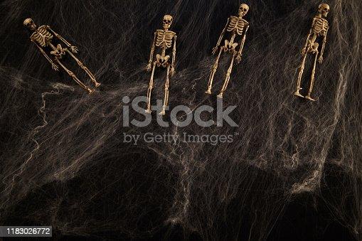 istock Halloween or horror background. 1183026772