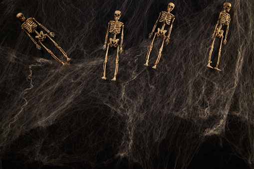 istock Halloween or horror background. 1183026772