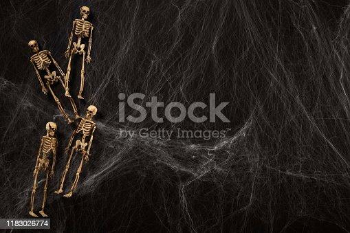 istock Halloween or horror background. 1183026774