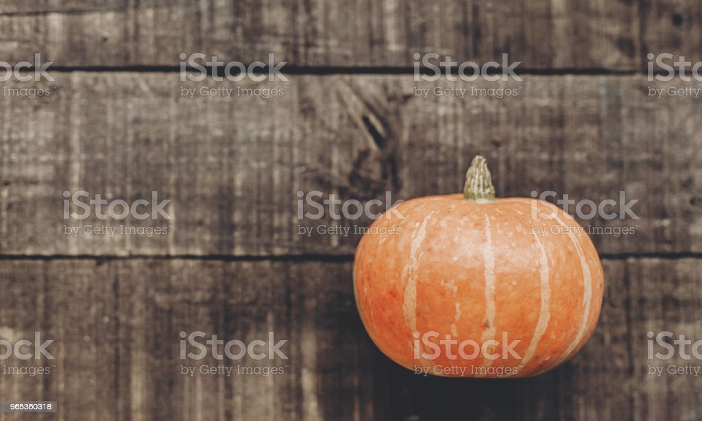 halloween or thanksgiving concept greeting card. beautiful pumpkin on rustic wooden background, top view. space for text. cozy autumn mood. fall holiday. stylish simple flat lay zbiór zdjęć royalty-free