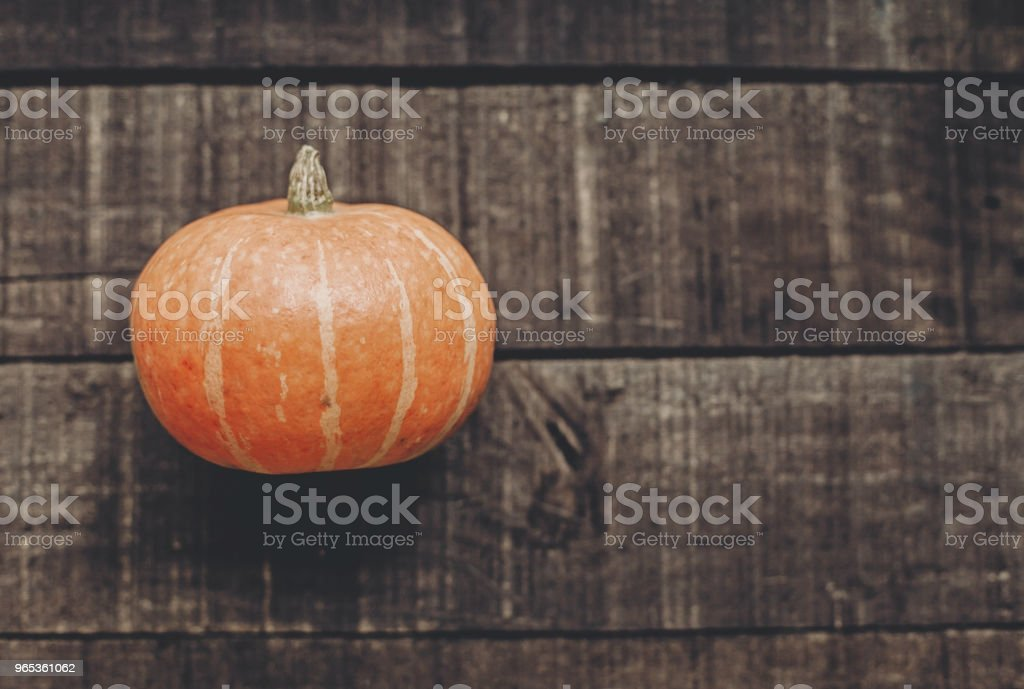 halloween or thanksgiving concept greeting card. beautiful pumpkin on rustic wooden background, top view. space for text. cozy autumn mood. fall holiday. stylish simple flat lay royalty-free stock photo