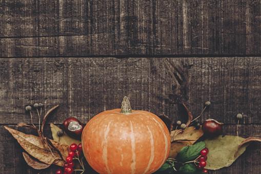 할로윈 이나 추수 감사절 개념 인사말 카드 플랫 하다입니다 와 아름 다운 호박 잎과 소박한 나무 배경 평면도에 딸기 텍스트를 위한 공간입니다 아늑한가 분위기입니다 가 휴가 10월에 대한 스톡 사진 및 기타 이미지